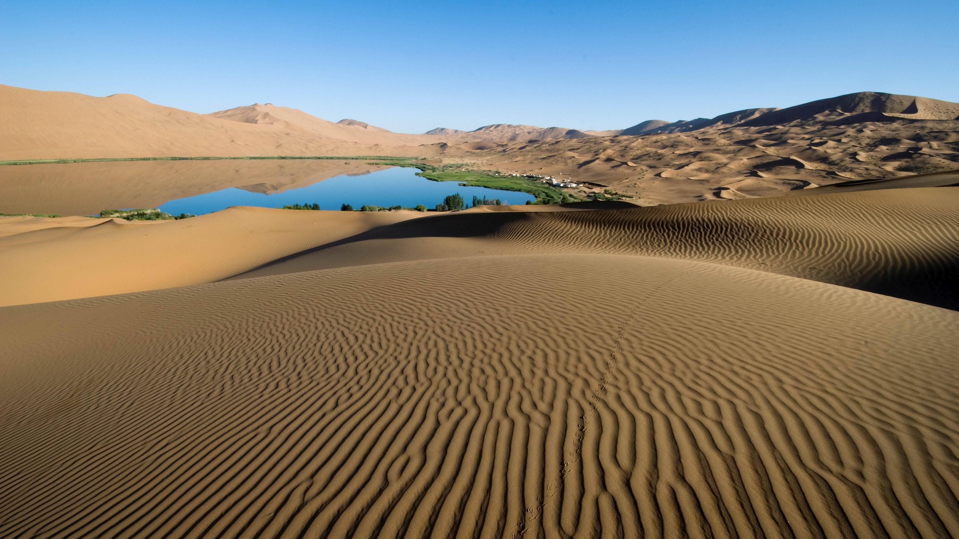 oasis-in-the-desert-9153-3840x2160